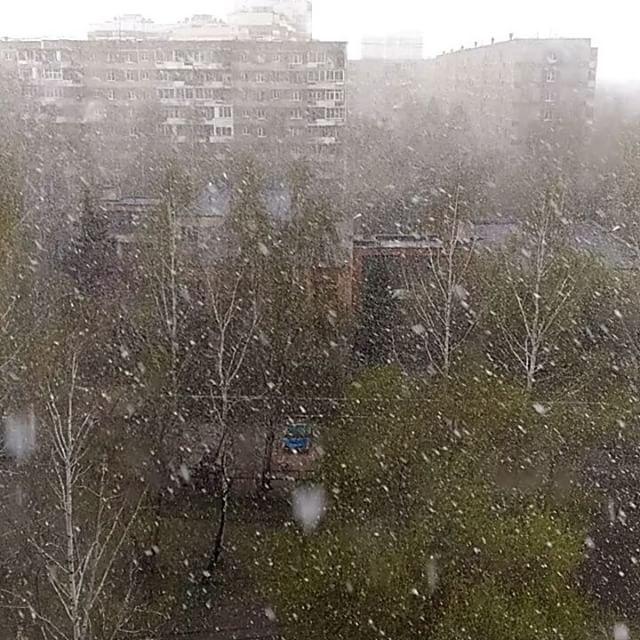 Погода г. волгоград на гисметео