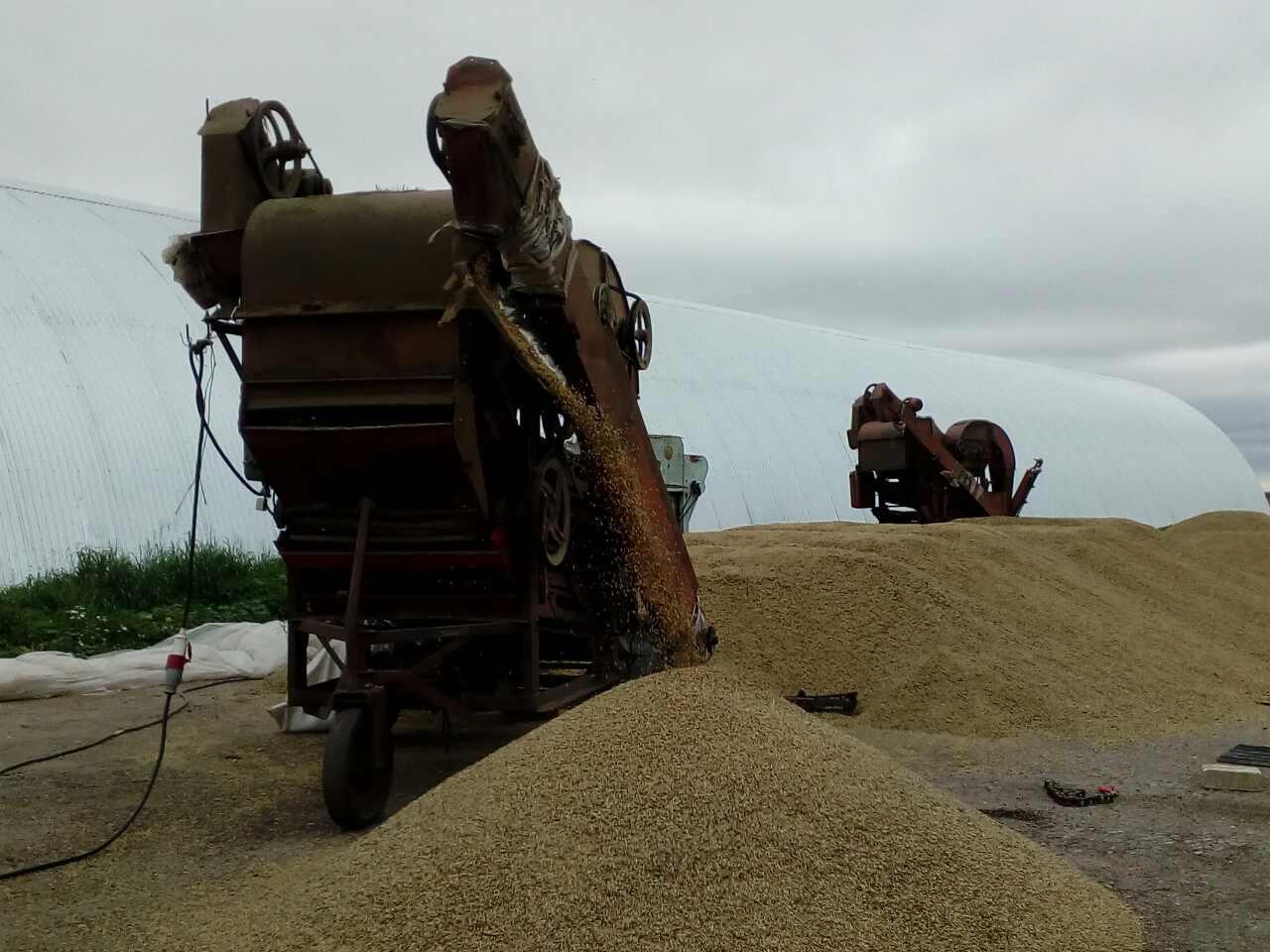 Минсельхоз: на20сентября собрано 117 млн тонн зерна