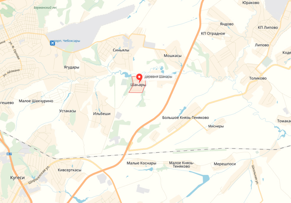 Иммунизацию лис против бешенства в Чебоксарском районе проведут в мае